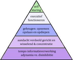 cognitieve piramide